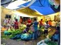 Kolkata-Flower Market (2)