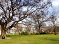 Hofburg-Gardens-2