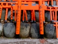 Faith-Fushimi-Inari-Shrine-4