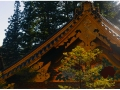 Faith-Nikko-Temple-2