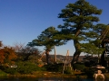 The-architecture-of-Nature_Kanazawa-3