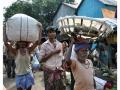 Kolkata-Flower-Market-Eye-Contact