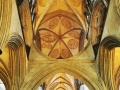 Salisbury-Cathedral---Amazing-Ceiling