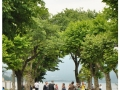 Lago Maggiore - Isola dei Pescatori (3)