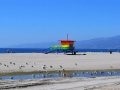 Los Angeles-Venice Beach