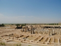 Persepolis-From-up-here-I-can-see-it-all