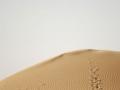 Karakum Desert - Tracks