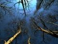 Il fiume, Lungo Po Antonelli
