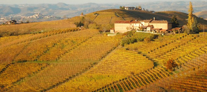 Ode to the Langhe ● With pure eyes, I celebrate you, my beauty